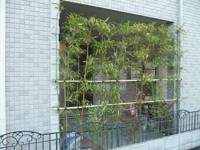 生垣が外からの視線を遮ります。