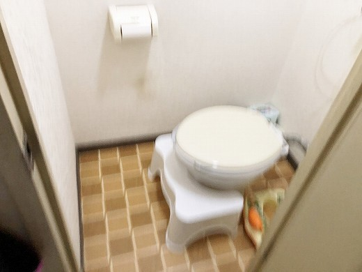 トイレ着工前 (1)
